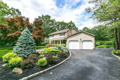 Dix Hills Single Family Home For Sale: 21 Village Dr