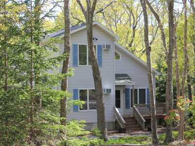 Hampton Bays Single Family Home For Sale: 21 Newtown Ct