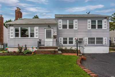 Bethpage Single Family Home For Sale: 331 Stewart Ave