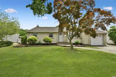 Bethpage Single Family Home For Sale: 42 S Windhorst Ave