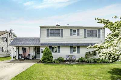 Levittown Single Family Home For Sale: 67 Ramble Ln