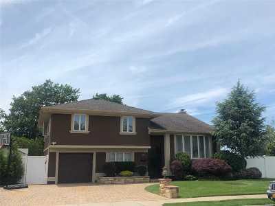 Franklin Square Single Family Home For Sale: 336 Grange St