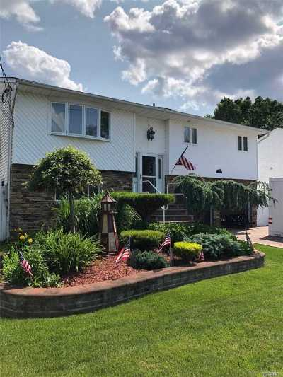 Nassau County, Suffolk County Single Family Home For Sale: 58 Lexington Ave
