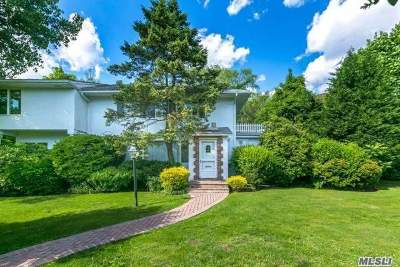 Great Neck Single Family Home For Sale: 27 Nirvana Ave