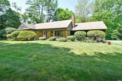 Dix Hills Single Family Home For Sale: 7 Empire Ct
