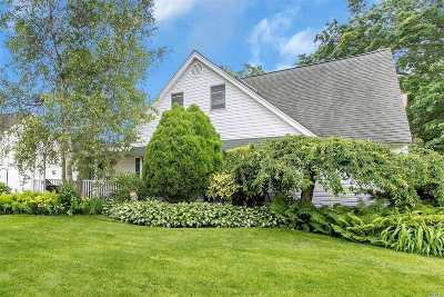 Wantagh Single Family Home For Sale: 41 Disc Ln