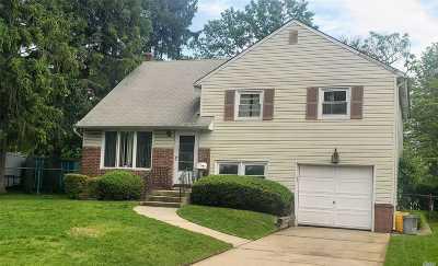 Plainview Single Family Home For Sale: 91 Diamond Dr