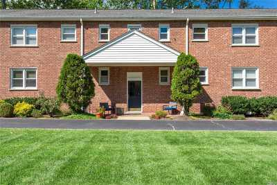 Huntington Co-op For Sale: 20 Gibson Ave #D1