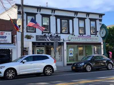 Sayville Commercial For Sale: 15-19 Main St