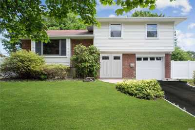 Plainview Single Family Home For Sale: 156 Radcliffe Rd