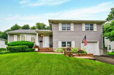 Bethpage Single Family Home For Sale: 72 Caffrey Ave