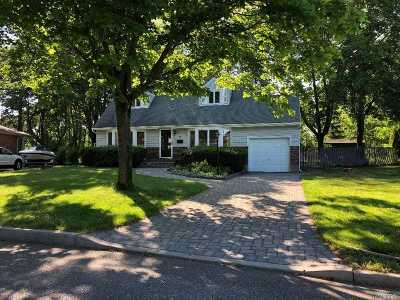 Commack Single Family Home For Sale: 18 Terry Ln