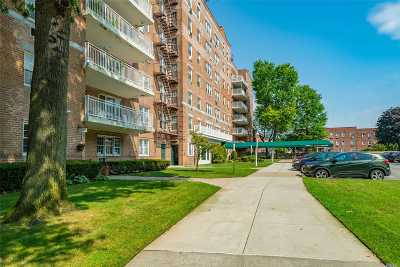 Queens County Condo/Townhouse For Sale: 85-09 151 St #6H