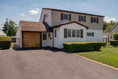 Levittown Single Family Home For Sale: 20 Collector Lane