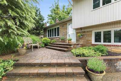 Garden City Single Family Home For Sale: 36 Pell Ter