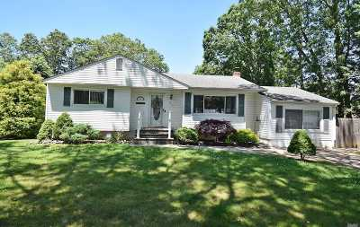 Islip Terrace Single Family Home For Sale: 353 Amityville St