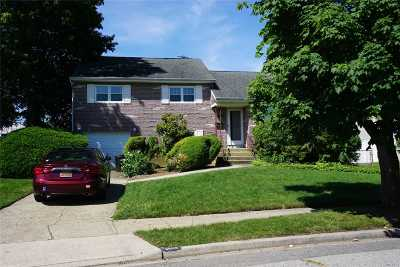 Wantagh Single Family Home For Sale: 3658 Libby Ln