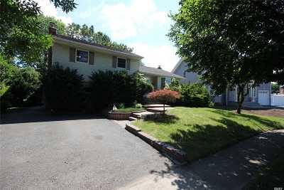 Syosset Single Family Home For Sale: 49 Colony Ln
