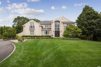 Woodbury Single Family Home For Sale: 20 Woodbury Farms Dr