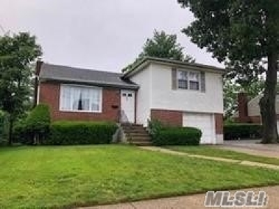 Valley Stream Single Family Home For Sale: 50 Hudson Ave