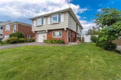 Freeport Single Family Home For Sale: 171 Westside Ave