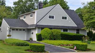 Westbury Single Family Home For Sale: 16 Page Ln