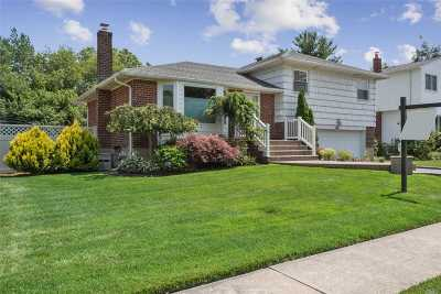 Plainview Single Family Home For Sale: 6 Wayland Rd