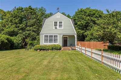 Sayville Single Family Home For Sale: 156 Johnson Ave