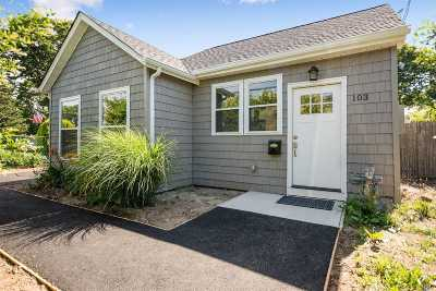 East Islip Single Family Home For Sale: 103 Irish Ln