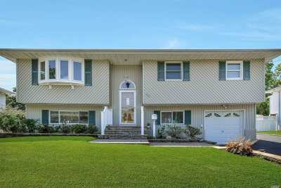 Commack Single Family Home For Sale: 102 Wicks Rd