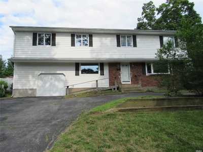 Bethpage Single Family Home For Sale: 653 Plainview Rd