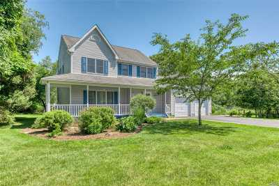 Greenport Single Family Home For Sale: 190 Pheasant Pl