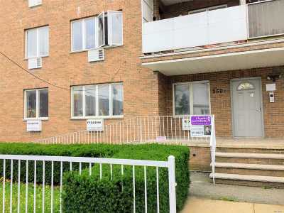 Brooklyn Condo/Townhouse For Sale: 2504 E 14th St #1B