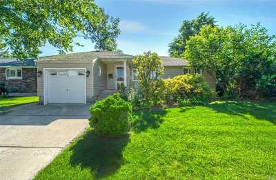 Valley Stream Single Family Home For Sale: 816 W Gate