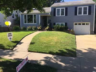 Wantagh Single Family Home For Sale: 3434 Homestead Ave