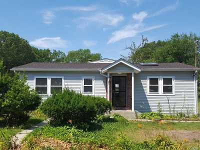 Ronkonkoma Rental For Rent: 96 Bay Ave
