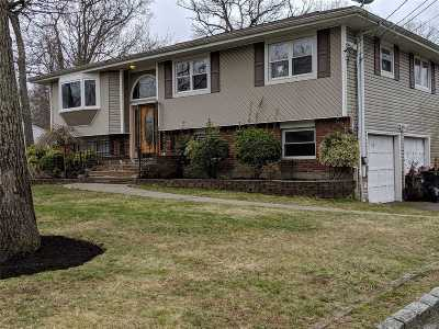 Selden Single Family Home For Sale: 44 New Ln