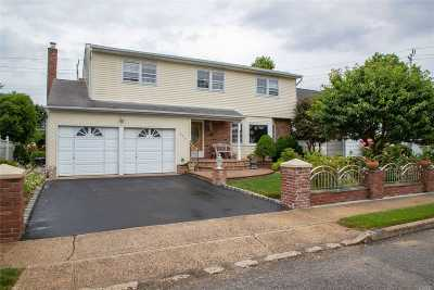 Bellmore Single Family Home For Sale: 868 Jennie Ct