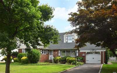 Floral Park Single Family Home For Sale: 78 Chestnut Ave
