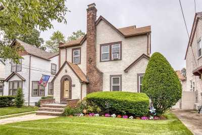 W. Hempstead Single Family Home For Sale: 269 Sycamore St