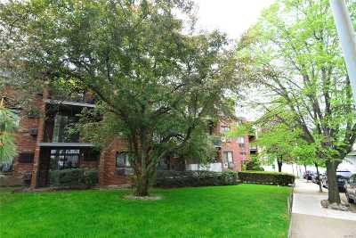 Middle Village Condo/Townhouse For Sale: 57-45 74 St #210