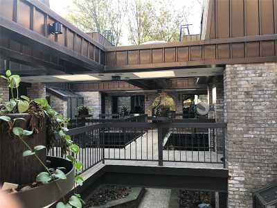 Great Neck Condo/Townhouse For Sale: 130 S Middle Neck Rd