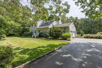 Manorville Single Family Home For Sale: 328 Chapman Blvd