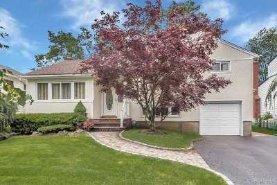East Meadow Single Family Home For Sale: 914 Shari Ln