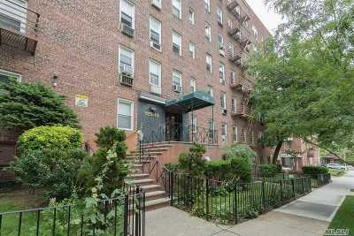 Kew Gardens Rental For Rent: 125-16 83rd Dr