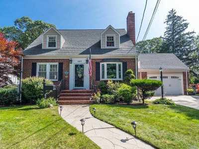 Valley Stream Single Family Home For Sale: 227 E Carpenter St