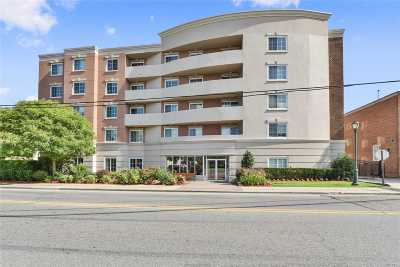 Westbury Condo/Townhouse For Sale: 242 Maple Ave #216