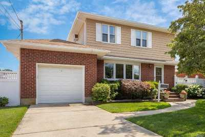 Massapequa Single Family Home For Sale: 180 N Manhattan Ave