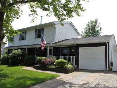 Islip Terrace Single Family Home For Sale: 154 Helene St