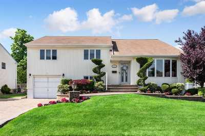 Wantagh Single Family Home For Sale: 3682 Libby Ln